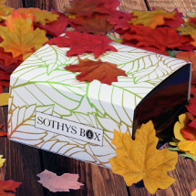 Packshot of SOTHYS beauty box